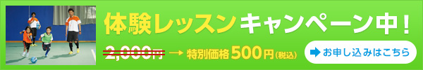 体験レッスンキャンペーン中!:2,000円  → 特別価格500円(税込)